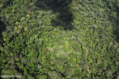 Improving the rigor of measuring emissions from deforestation, agriculture