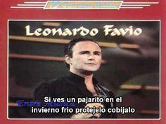 Leonardo Favio-La Foto de Carnet-Karaoke-Demo