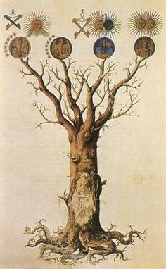 gorgeous illustration of a tree and symbolism