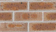 Bricks - Old Colonial - Amber Glow Colonial, Bricks, Amber, Glow, House Ideas, Brick, Sparkle, Ivy