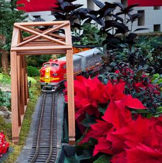 "Gardenland Express, the annual holiday flower and train show, opens this Wed. Nov 21! Come celebrate ""Merry Botanical Traditions!"""