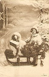 Vintage holiday card with a poodle