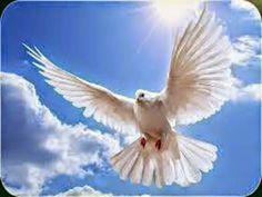 JEZUS en MARIA Groep.: Geestdrift voor Gods Werken