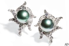 """As part of her new line for Assael, jeweler Angela Cummings captures the mysteries of the sea with alluring platinum-and-pavé-diamond wave earrings anchored by gleaming Tahitian black pearls. Together, the 1""""-dia. earrings feature 2.9 carats of diamonds; price upon request.assael.com, 212-819-0060"""