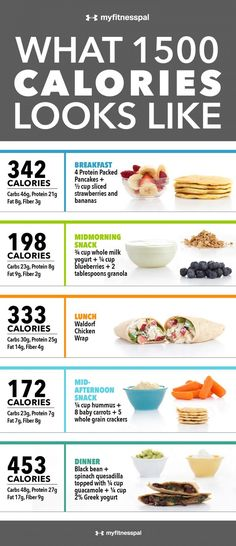 What 1,500 Calories Looks Like [Infographic] | MyFitnessPal