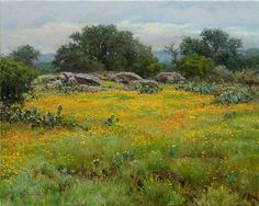 Coreopsis by Mark Haworth Oil ~ 24 x 30