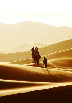 """#despertar Provérbio Árabe: """"Os cães ladram, e a caravana passa."""" الكلاب تعوي والقافلة تسير"""
