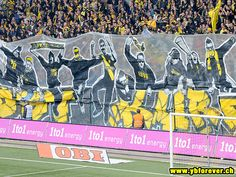 BSC Young Boys, Switzerland