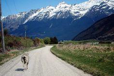 glenorchy new zealand   Glenorchy, New Zealand.   Someday...