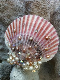 Make mermaid hair clips out of all those shells you collect at the beach Seashell Art, Seashell Crafts, Beach Crafts, Diy And Crafts, Arts And Crafts, Seashell Painting, Starfish, Arte Assemblage, Scallop Shells