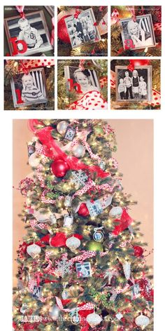sm ornaments 3