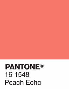 Pantone PANTONE 13-1520 Rose Quartz - Fashion Colour Report Primavera 2016