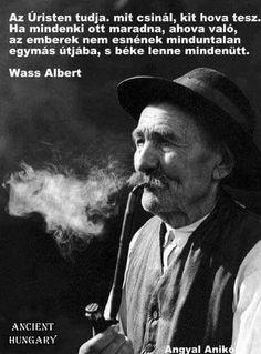 Wass Albert Good Sentences, Qoutes, Cool Photos, Literature, Writer, Wisdom, Messages, Humor, Motivation