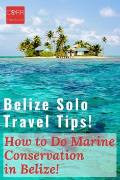 Diving is one of the top things to do in Belize so why not volunteer while diving? Here is how I did coral reef protection #Volunteer work in BEAUTIFUL #Belize as part of my solo travel and Belize solo travel tips on how you can too! By @corrtravel #CORRTravel Solo Travel Tips | Solo Female Travel Tips | Over 40 Travel | Voluntourism Travel | Eco Friendly Travel Tips | Sustainable Travel Tips | International Travel Tips | Travel Tips and Tricks | Retirement Travel Ideas Solo Travel Tips, Travel Guide, Travel Ideas, Travel And Tourism, Travel Destinations, Airline Travel, International Travel Tips, International Volunteer Programs, Marine Conservation