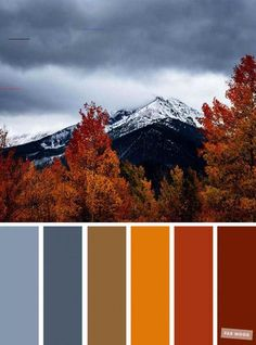 59 Pretty Autumn Color Schemes { Smokey + Orange } - #autumncolorpalette - Pretty Autumn Color Schemes { Smokey + Orange } A pretty colour palette of blue and yellow. To get you started on your own palette,...... Color Schemes Colour Palettes, Orange Color Palettes, Blue Colour Palette, Color Palate, Color Combos, Fall Color Schemes, Autumn Color Palette, Fall Paint Colors, Winter Colors