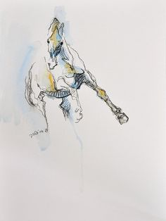 Equine Nude 68  Black chalk and watercolor Horse by benedictegele, €120.00