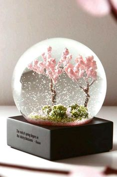 Four Season Crystal Ball Glass Water Snow Globe – I sell what I love End Of Spring, Water Globes, Cute Room Decor, Glass Ball, Crystal Ball, Glass Crystal, Purple Flowers, Diy And Crafts, Cool Things To Buy