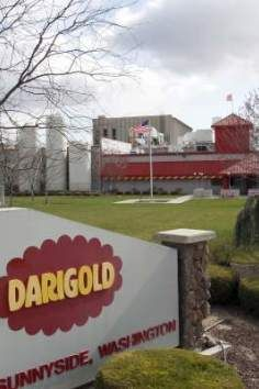 Darigold is a Tourist Attraction in Sunnyside. Plan your road trip to Darigold in WA with Roadtrippers. Sunnyside Washington, Yakima Valley, Road Trip, Cheese, Memes, Places, Outdoor Decor, Road Trips, Meme