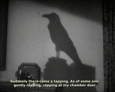 67 cuentos de Edgar Allan Poe traducidos por Julio Cortázar (descarga gratuita…