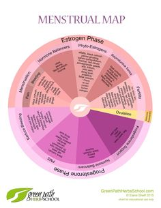 Menstrual Map: Explorations of Menstrual Health by Elaine Sheff, Clinical Herbalist - Green Path Herb School Pms, Hormon Yoga, Period Cycle, Period Problems, Hormone Balancing, Herbalism, The Cure, Seed Cycling, Women's Cycling