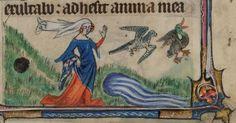 A lady, hawking. Medieval manuscript illustration
