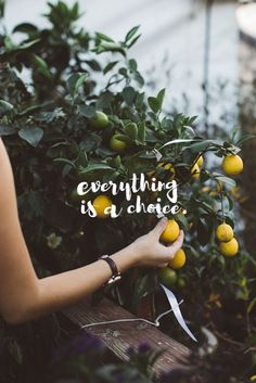 everything is a choice #Quote #Motivation #Luvo