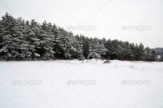 Realistic Graphic DOWNLOAD (.ai, .psd) :: http://vector-graphic.de/pinterest-itmid-1006740292i.html ... Winter ...  ice, landscape, mountain, nature, phanorama, sky, snow, tree, winter, wood  ... Realistic Photo Graphic Print Obejct Business Web Elements Illustration Design Templates ... DOWNLOAD :: http://vector-graphic.de/pinterest-itmid-1006740292i.html