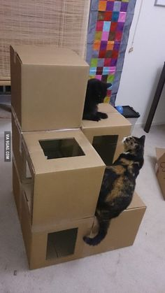 "A cat condo out of the ""cat""-board boxes."