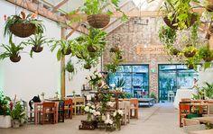 Indoor garden Indoor Greenhouse, Indoor Garden, Indoor Plants, Wedding Venues Sydney, Wedding Reception Venues, Sydney Photography, Photographer Sydney, Wedding Photography, Wedding Notes