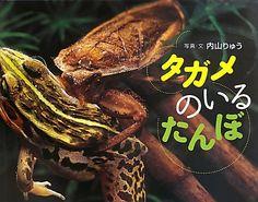 タガメが自分より大きなカエルを捕獲するシーンなど、迫力満点の写真が満載! その内容も目から鱗の驚くことばかりで、大興奮!最高に面白いかも。ぜひ、小学校や学童で読みたい。教えたい。初夏から秋にかけてかな。