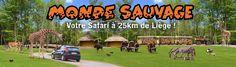→ Le Monde Sauvage Safari Parc - Monde Sauvage