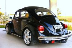 Black German look Beetle