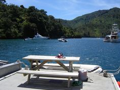 Lochmara, Queen Charlotte Sounds