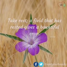 Take rest; a field that has rested gives a bountiful crop.  Ovid  For more natural beauty tips visit http://ift.tt/1Yne0k2