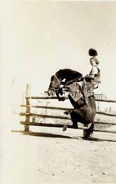 Snapshots Of Dangerous Women Cultura Vintage Cowgirl, Vintage Horse, Old Pictures, Old Photos, Vintage Photographs, Vintage Photos, Satisfying Photos, Cowgirl Photo, Spring Photos