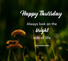 Happy Thursday! Always look on the bright side of life. #Thursdaymorningwishes #Thursdaypositivequotes #Happythursdayquotes #Thursdayquotesforwork #Goodmorningthursday #Morningthursdayquotes #Morningwishesquotes #Goodmorningwish #Beautifulmorningwishes #Thursdayquotes #Thursdaymorningquotes #Thursdaysayings #Goodmorningquotes #Goodmorningsayings #Positiveenergy #Inspirationalmorningquotes #Inspirationalquotes #Dailyquotes #Everydayquotes #Instaquotes Thursday Morning Quotes, Happy Thursday Quotes, Morning Wishes Quotes, Good Morning Wishes, Good Morning Quotes, Happy Thursday Images, Everyday Quotes, Daily Quotes, Life Quotes
