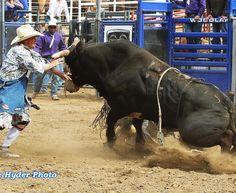 cowboy walked away...