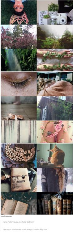 """foundinghouses: Harry Potter House Aesthetic: Slytherin   """"We are all four houses in one and you cannot deny that."""""""