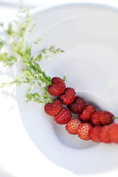 stringing wild strawberries onto a grass - awesome childhood memory