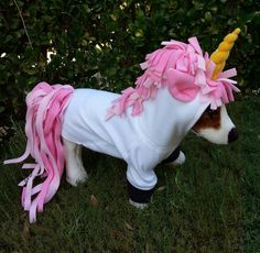 Pink Maned Unicorn Hoodie for Dogs or Cats . Pink Maned Unicorn Hoodie for Dogs or CatsUnicorn Costume For Dogs & Sc 1 St Playpennies. Dog Training Come, Guard Dog Training, Training Collar, Best Dog Halloween Costumes, Diy Dog Costumes, Halloween Ideas, Unicorn Dog Costume, Unicorn Hoodie, Dog Control