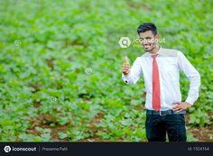 Indian agronomist at cotton field Photo Agriculture Photos, Cotton Fields, Icon Pack, Photo Illustration, Vector Icons, Photoshop, Animation, Indian, Pictures