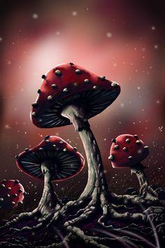 mushrooms by fredziq.deviantart.com on @deviantART