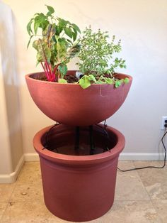 "The Eden ""Mini Garden aquaponics kit""."