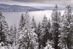 Snow scene overlooking Lake Coeur d'Alene.