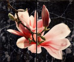 bacteriia: Susan Goldsmith - Moon Glow Silver leaf with pigment print, oil pastel, acrylic paint, iridescent watercolours and resin on panel. Landscape Art, Landscape Paintings, Art Paintings, Eastern Redbud, Magnolia Flower, Triptych, Dark Backgrounds, Fine Art Photography, Artsy