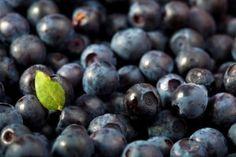 We're Jammin': Coronation Whole Grape Jam Grape Jam, Grape Jelly, Preserves, Blueberry, Homemade, Fruit, Recipes, Food, Pickles