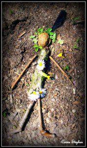 Art Et Nature, Nature Crafts, Land Art, Birds And Their Nests, First Grade Art, What Is A Bird, Atelier D Art, Forest School, Leaf Flowers