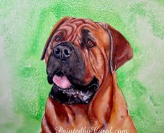 Mastiff - watercolor on paper Green Backgrounds, Watercolor Paintings, Watercolors, Pet Portraits, Giclee Print, Jigsaw Puzzles, My Arts, Just For You, Art Prints