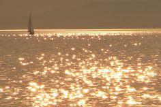 Golden Balaton - Lake Balaton, Hungary Nature Photos, Hungary, Wonders Of The World, Free Photos, Boats, Law, Beautiful Places, Meditation, Wallpapers