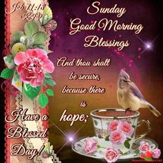 I pray that you have a safe and blessed day! Sunday Morning Images, Blessed Sunday Morning, Good Morning God Quotes, Sunday Love, Happy Sunday Quotes, Good Morning Prayer, Good Morning Happy, Morning Blessings, Morning Prayers